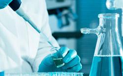 El Istat publica su informe sobre Investigación y desarrollo en Italia
