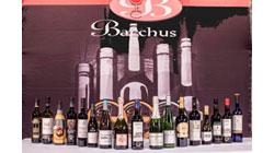 Trece vinos italianos galardonadas en Bachus 2017