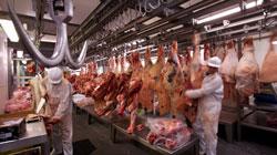 L'industria della carne rappresenta più del 22% dell'intero settore alimentare in Spagna